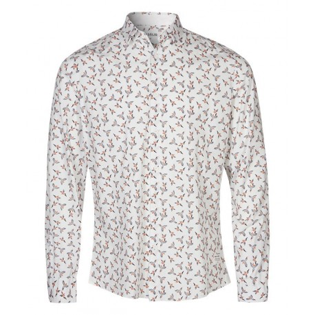 Chemise Solid